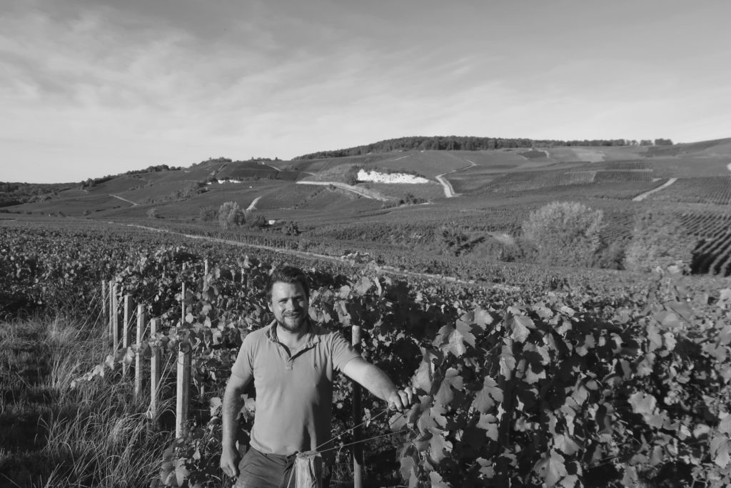 Romain Henin - Wine Challenge Podcast